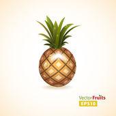 Vector fruits illustration — Stock Vector