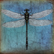 Dragonfly grunge background — Stock Photo