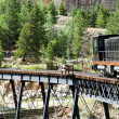 Steam Train Crossing a Bridge in the Colorado Rocky Mountains — Stock Photo