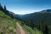 Colorado Mountain Trail — Stock Photo