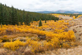 Fall Mountain Landscape in Colorado — Stock Photo