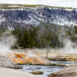 Erupting Geyseys Pour Into The Firehole River — Foto Stock