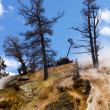 Barren Cliffs of Mammoth Hot Springs in Yellowstone — Stock Photo