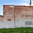 Royalty-Free Stock Photo: Grunge Covered Brick Wall