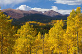 Colorado Rocky Mountains and Golden Aspens in Fall — Stock Photo