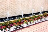 Giardino di fiori vaso — Foto Stock