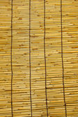 Bamboo wall. — Stock Photo