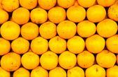 Many orange. — Stock Photo
