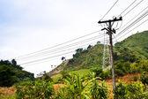 Poste de electricidad — Foto de Stock