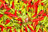 Green and red chili. — Stock Photo