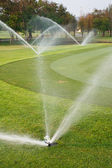 Watering in golf course — Stock Photo
