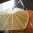 Two fly swatters — Stock Photo #9310206