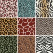 Seamless animal swatch — Image vectorielle