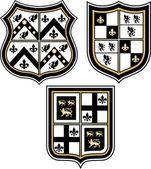 Královský znak odznak štít — Stock vektor