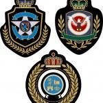 Emblem badge design — Stock Vector #10071446