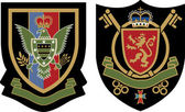 Royal eagle crest emblem badge — Stock Vector