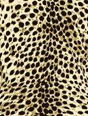 African animal skin texture — Stock Vector