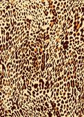Abstract animal skin texture — Stock Vector