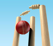 Cricket Ball Hitting Wickets — Stock Photo