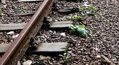 övergivna järnvägen fodrar — Stockfoto