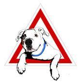 American bulldog on board — Stock Vector