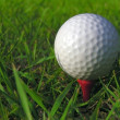 Golf Ball — Stock Photo #9251654
