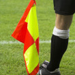 Royalty-Free Stock Photo: Linesman