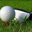 Golf Ball — Stock Photo #9253491