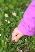 Baby och blommor av våren — Stockfoto