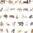 Stock Vector: Wild Animals Set
