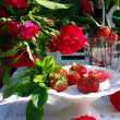 Table decoration with strawberrys. — Stock Photo #10205873