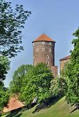 La torre en el castillo de wawel — Foto de Stock
