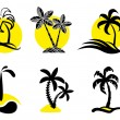 Tropical icons. — Stock Vector #9405786