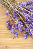 Dried lavender on a wooden desk — Stock Photo