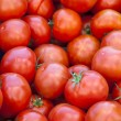 Fresh red tomatoes - Foto de Stock