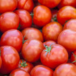 Fresh red tomatoes - Photo
