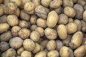 Group of potatoes — Stock Photo