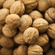 Group of walnuts - Stock Photo