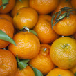 Fresh tangerines on market - Stockfoto
