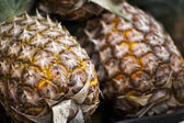 Fresh pineapple on a market — 图库照片
