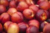 Fresh nectarine fruits — Stock Photo