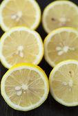 Verse citrusvruchten — Stockfoto