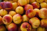 Fruits frais nectarine — Photo