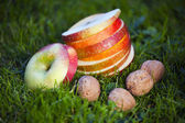 Fresh fruits — Foto Stock