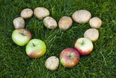 Potato and apples heart — Stock Photo