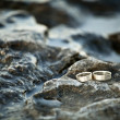 Wedding rings in nature — Stock Photo