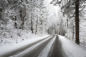 Winter road in polish mountains — Stock Photo