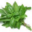 Herb Series Mixed Herbs — Stock Photo