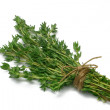 Herb SeriesThyme — Stock Photo