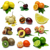 Fruit Sampler Two — Stockfoto